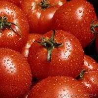 Tomato Techniques